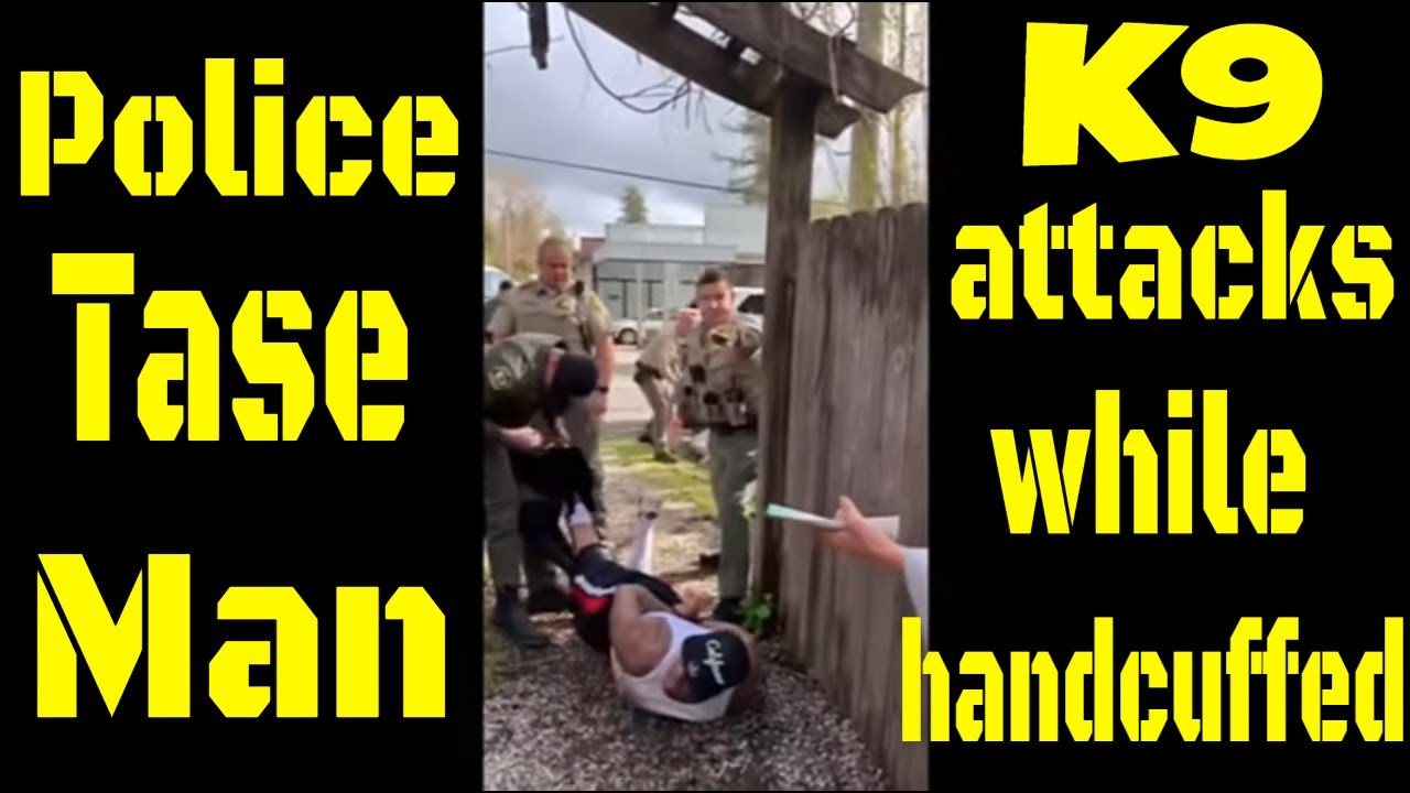 Police tase then K9 attacks Man while handcuffed cop watch